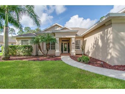 272 SE Brightwater Drive Palm Bay, FL MLS# 735822