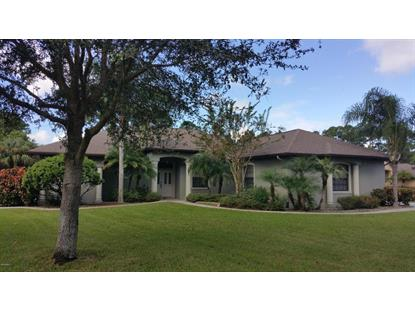 284 SE Brightwater Drive Palm Bay, FL MLS# 737819