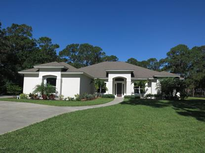 1676 Seabury Point Road Palm Bay, FL MLS# 753172