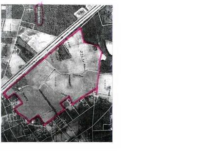 DANTZLER POND RD  Harleyville, SC MLS# 1001017