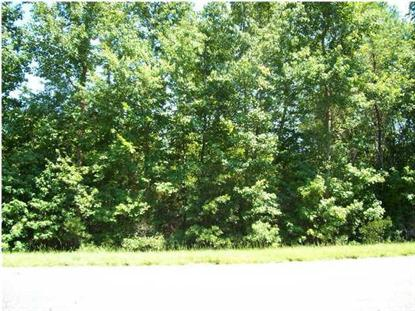 Highway 17a  Cottageville, SC MLS# 1010588