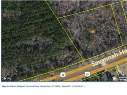 0 SAVANNAH HWY  Adams Run, SC MLS# 1409995
