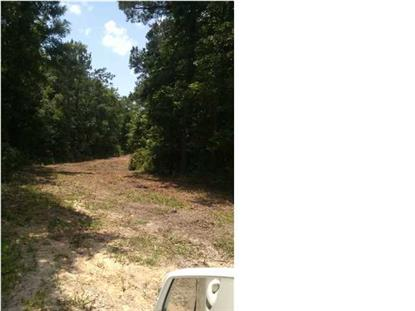 0 BERTHA LN  Huger, SC MLS# 1417052