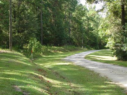 2 Beaver Dam Road Adams Run, SC MLS# 15003326