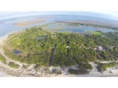 239 Pelican Flight Drive Dewees Island, SC MLS# 15007948