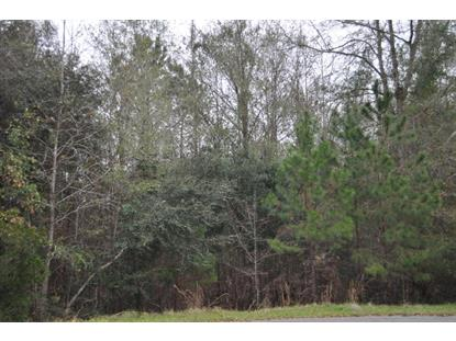 Mauss Hill Road Adams Run, SC MLS# 15031279