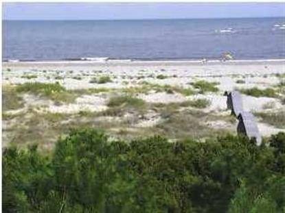 201 PELICAN FLIGHT DR  Dewees Island, SC MLS# 2721703