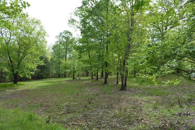 374 HAWLEY CREEK ROAD, Prosperity, SC