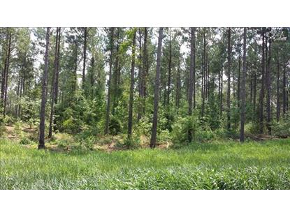 0 JEFFERSON ROAD Newberry, SC MLS# 353751