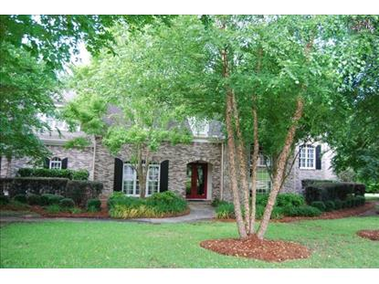 228 TREYBURN CIRCLE Irmo, SC MLS# 357204