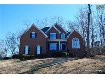 209 DUTCHFORK CREEK TRAIL Irmo, SC MLS# 369356