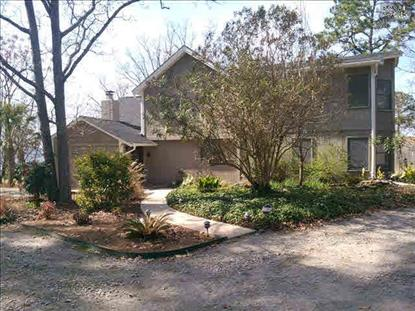 131 ALOHA COURT Gilbert, SC MLS# 373433