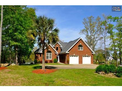 422 CREEK END CIRCLE Gilbert, SC MLS# 375203
