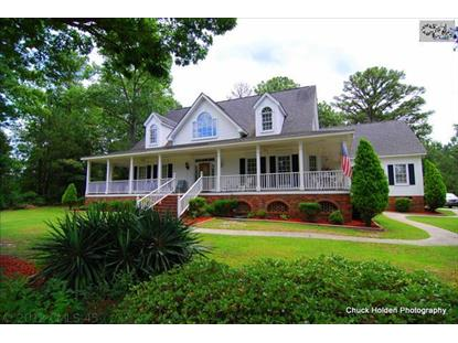 1377 CAMPING ROAD Gilbert, SC MLS# 378924