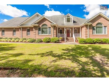 174 DIANA ROAD Gilbert, SC MLS# 379812