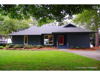 134 OLD ORCHARD ROAD Gilbert, SC MLS# 385168