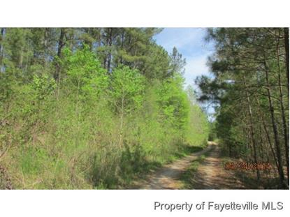 000 COLON RD /SHALLOW CREEK  Sanford, NC MLS# 423937