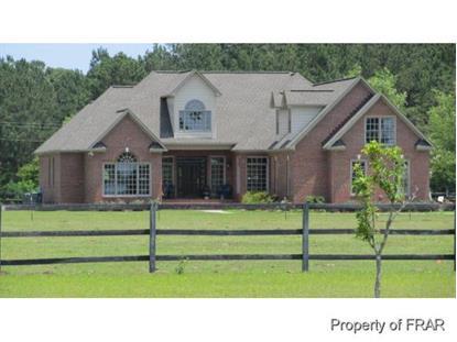 1750 WADE STEDMAN RD  Stedman, NC MLS# 435913