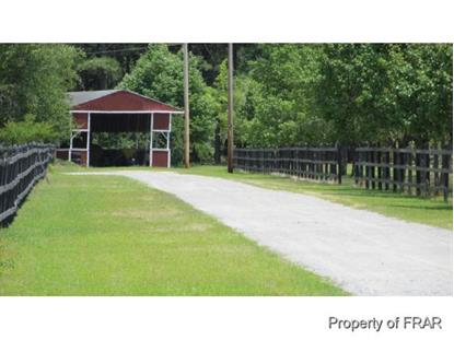1800 WADE STEDMAN RD  Stedman, NC MLS# 438697