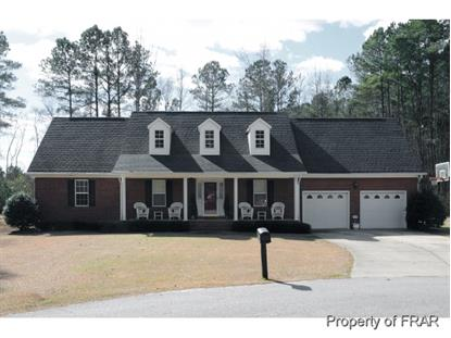 4000 WOODSVILLE PLACE  Stedman, NC MLS# 440701