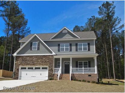 165 DICKS HILL ROAD  Carthage, NC MLS# 441133