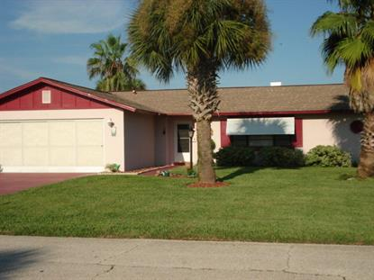 251 Ocean Palm Drive  Flagler Beach, FL 32136 MLS# 184481