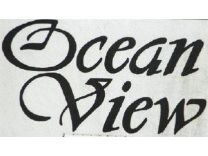 3600 Oceanshore Blvd S  Flagler Beach, FL 32136 MLS# 197697
