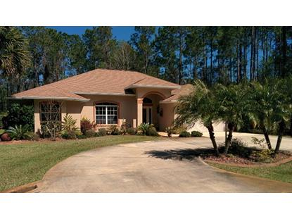 131 Eric Drive  Palm Coast, FL MLS# 203112