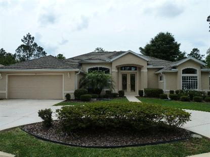 57 Edith Pope Drive  Palm Coast, FL MLS# 204073