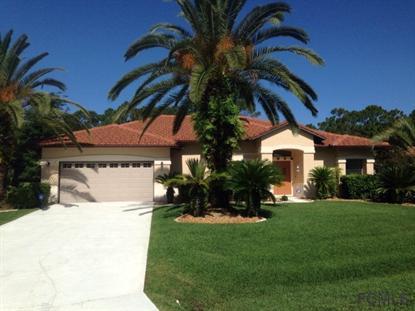 7 Sutton Court  Palm Coast, FL MLS# 204600