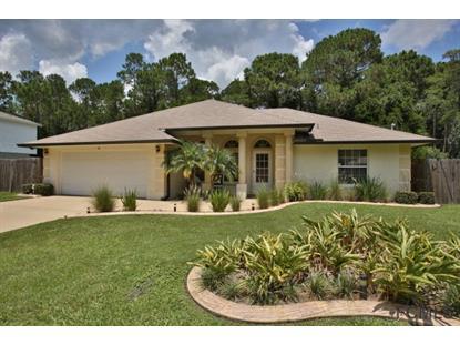 Address not provided Palm Coast, FL MLS# 206427