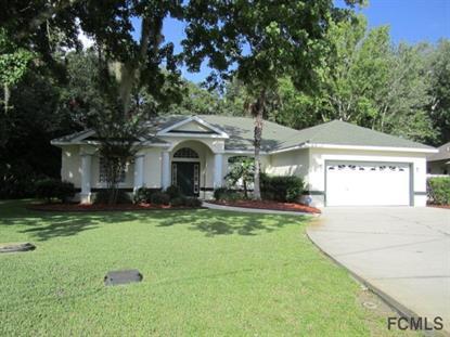 9 Echo Sands Place  Palm Coast, FL MLS# 206716