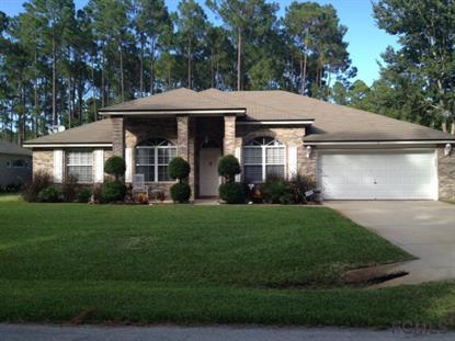 3 Poince Place  Palm Coast, FL MLS# 206783