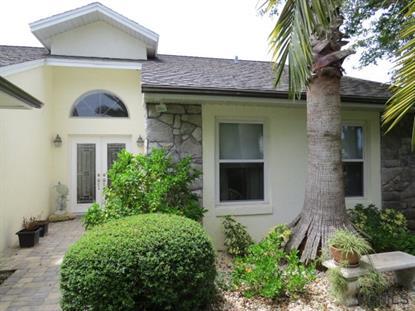 17 Corona Ct, Palm Coast, FL 32137