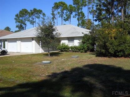 61 Raintree Pl, Palm Coast, FL 32164