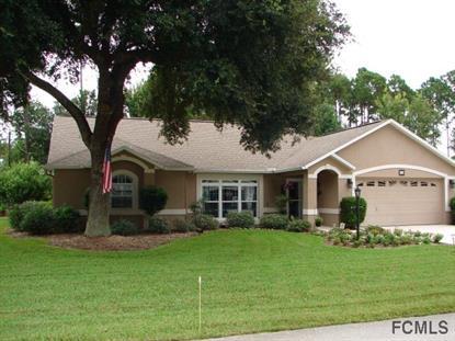 34 Ellington Drive  Palm Coast, FL MLS# 207336