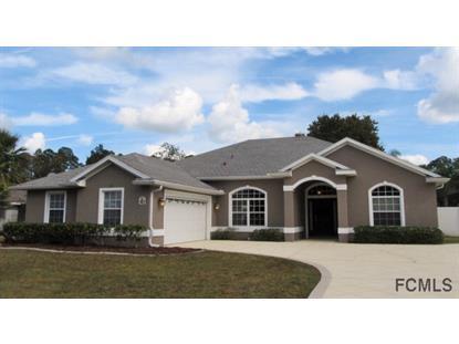 7 Ellison Ln  Palm Coast, FL MLS# 208402