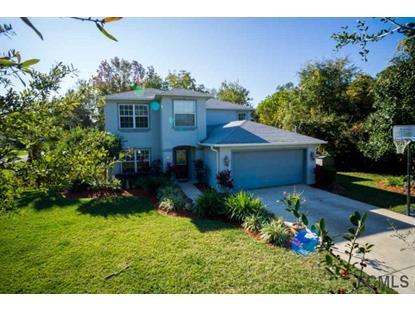 1 Wellesley Lane  Palm Coast, FL MLS# 208918