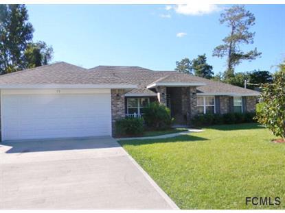 24 Port Echo Ln  Palm Coast, FL MLS# 211029