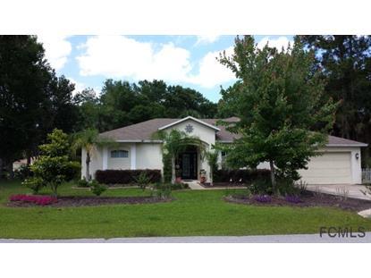 1 White Hawk Place  Palm Coast, FL MLS# 211130