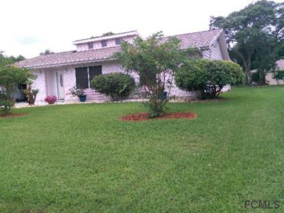 110 Florida Park Dr  Palm Coast, FL 32137 MLS# 212810