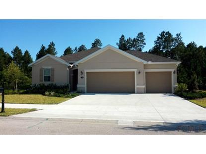 126 Spoonbill Drive  Palm Coast, FL MLS# 213424