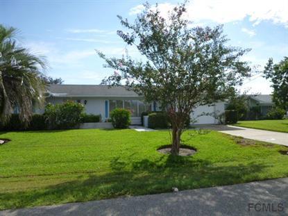 15 Cloverdale Ct S  Palm Coast, FL 32137 MLS# 215290