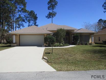 67 Egret Trail  Palm Coast, FL MLS# 215774