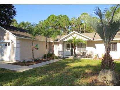 21 Port Royal Drive  Palm Coast, FL MLS# 216175