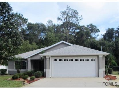 32 Egret Trail  Palm Coast, FL MLS# 216571