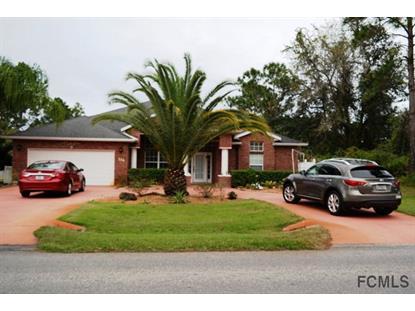334 Parkview Drive  Palm Coast, FL MLS# 217380