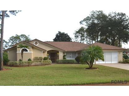 2 Wendlin Ln  Palm Coast, FL MLS# 217700