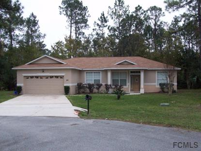 14 Squash Blossom Court  Palm Coast, FL 32164 MLS# 218525