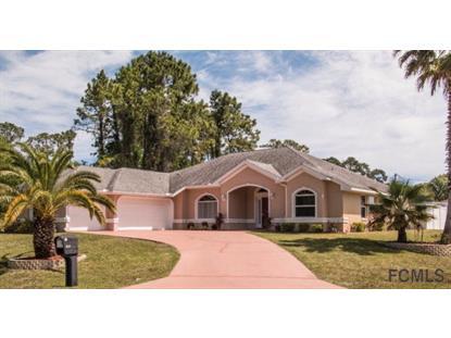 10 Woodfalon Place  Palm Coast, FL MLS# 220591